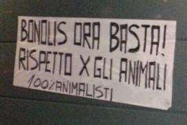"""Paolo Bonolis accusato dal gruppo """"100% Animalisti"""""""