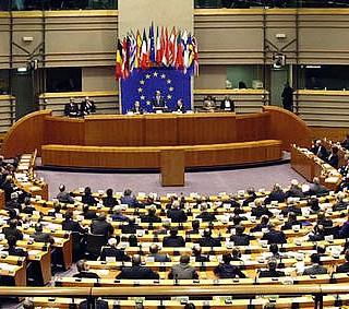 Strasburgo: spiraglio contro la vivisezione