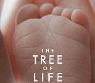 """Brad Pitt e Sean Penn nel trailer ufficiale di """"The Tree of Life"""""""