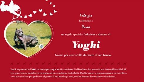 San Valentino: adotta un cane LAV a distanza