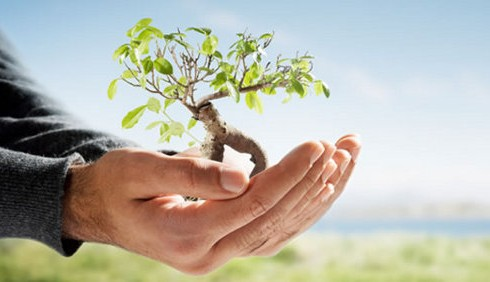 Salvare l'ambiente: foto