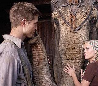Torture per l'elefantessa di Water for Elephants?