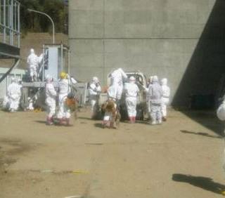 Fukushima: 250 anziani volontari per una missione suicida