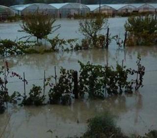 Cinque Terre: quattro morti e cinque dispersi per l'alluvione