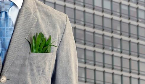 Professioni green, quali sono?
