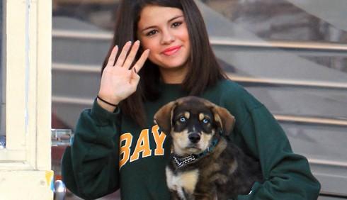 Selena Gomez e Justin Bieber adottano un cucciolo di Husky