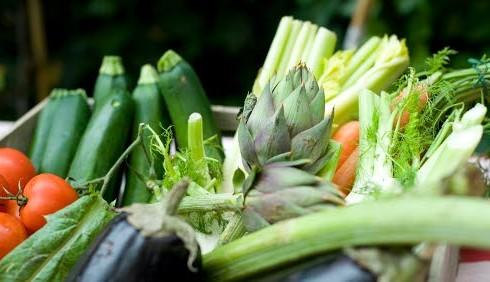 Come cuocere le verdure al vapore