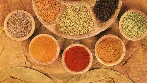 Usare le spezie nelle ricette diredonna - Le spezie in cucina ...