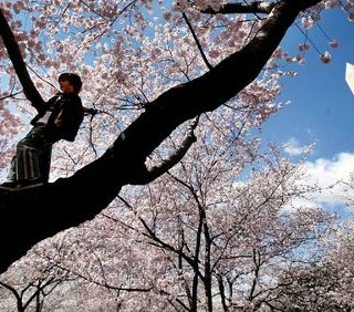 10 viaggi per la primavera