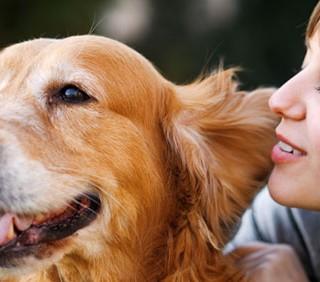 Il migliore anti stress sul lavoro? Il proprio cane