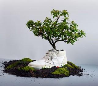 Fitness eco-friendly? Ecco alcuni esempi