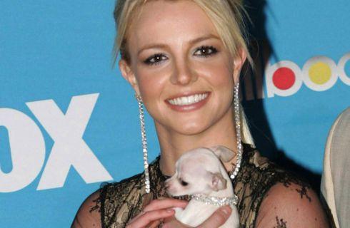 Britney Spears torna in forma e fa la prova costume su Instagram