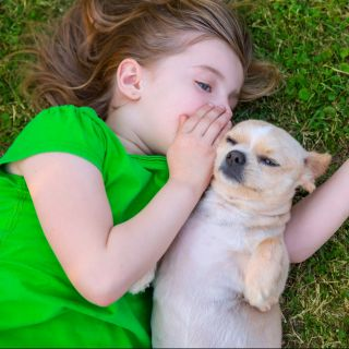Cani per bambini: foto e descrizioni delle razze più idonee