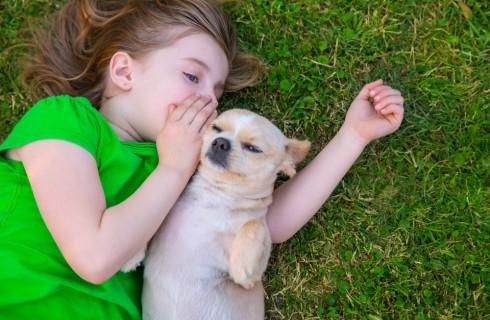 Cani per bambini: foto e descrizioni delle razze più adatte