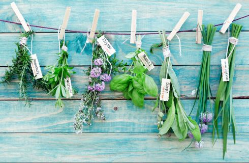 10 rimedi naturali per risolvere i problemi di tutti i giorni
