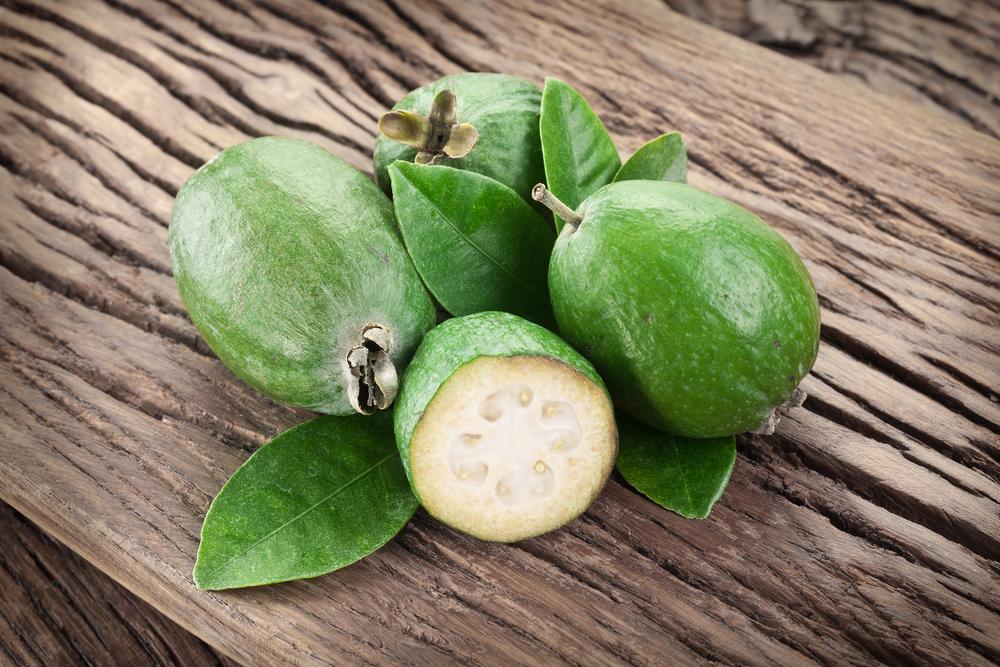 Feijoa propriet nutrizionali e benefici diredonna for Feijoa frutto prezzo