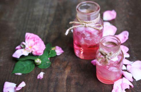 Olio di rosa mosqueta: usi e benefici