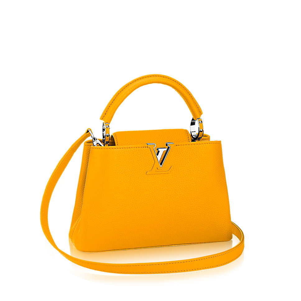Borse Louis Vuitton: must have