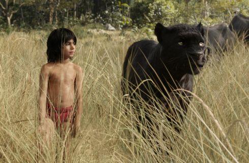 Il Libro della Giungla, il film per bambini che i grandi adoreranno