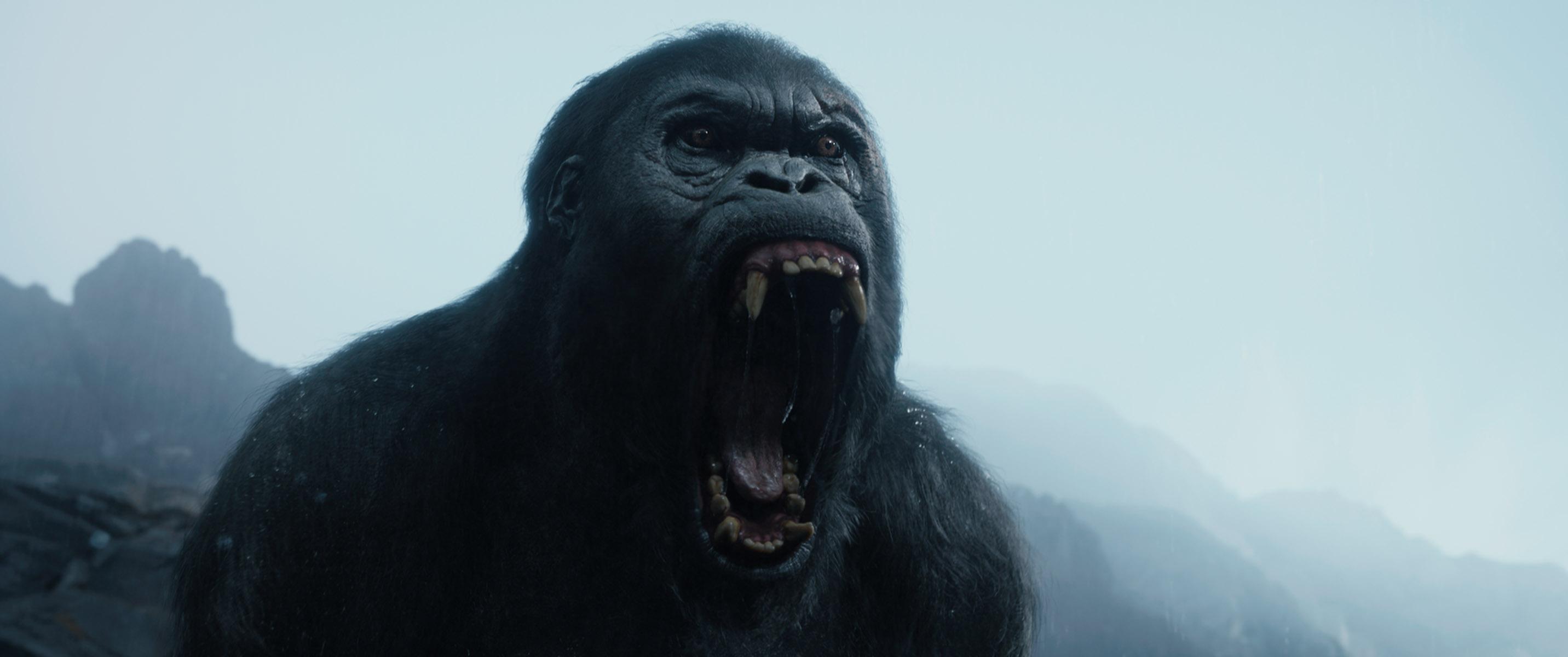 The Legend of Tarzan: le immagini del film