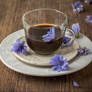 Caffè di cicoria: come si prepara e dove si compra