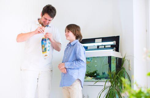 Acquario in casa: come iniziare