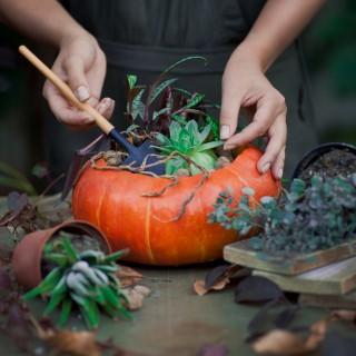 Idee per originali centrotavola ispirati all'autunno