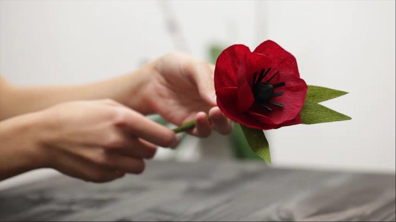 Fiore di carta8