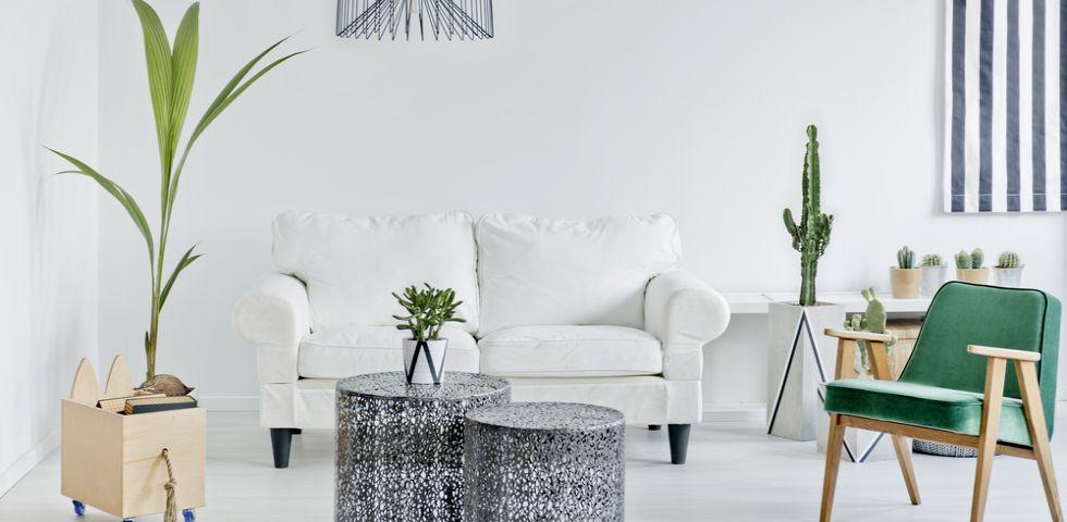 Come dividere, arredare e tinteggiare il soggiorno | DireDonna