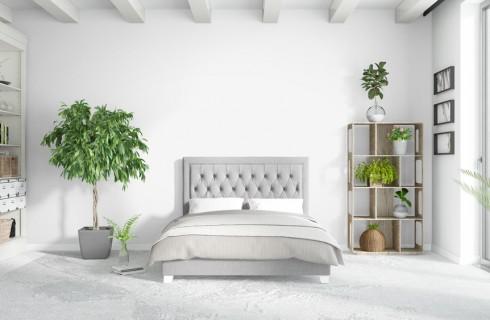 Piante in camera da letto: le varietà da scegliere