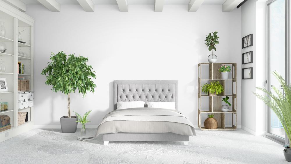 Piante in camera da letto le variet da scegliere diredonna for Camera letto piante