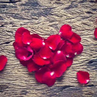 Anniversario di matrimonio: le frasi più belle