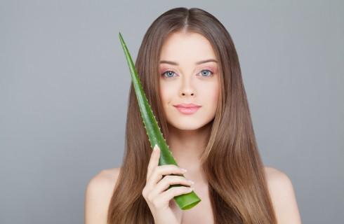 Aloe vera: benefici e controindicazioni