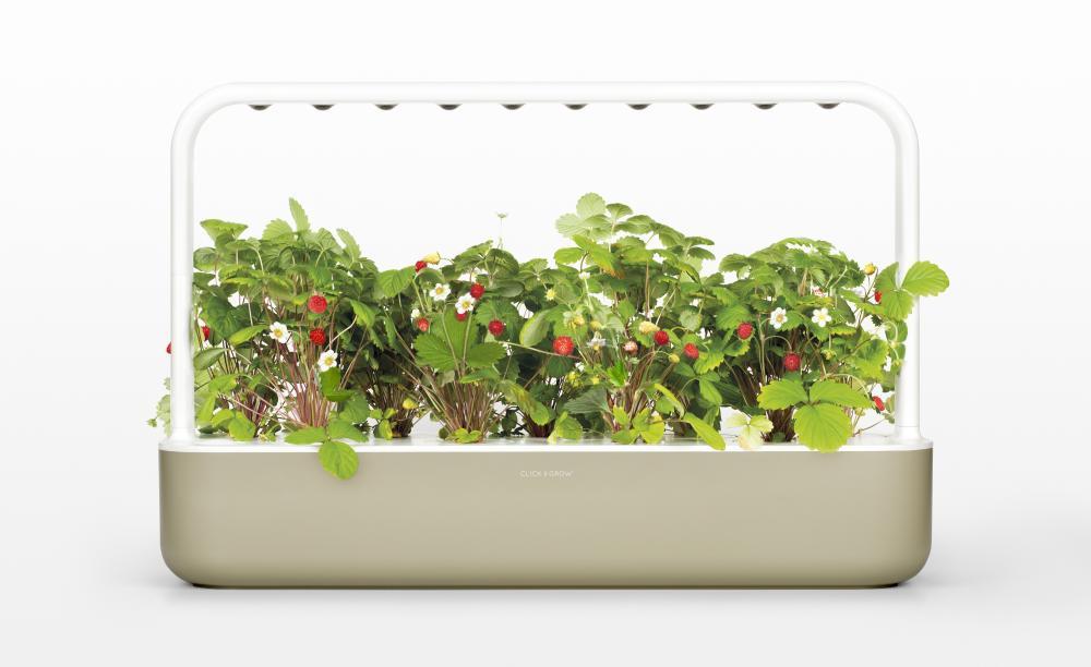 Smart Garden, la nuova serra domestica, foto