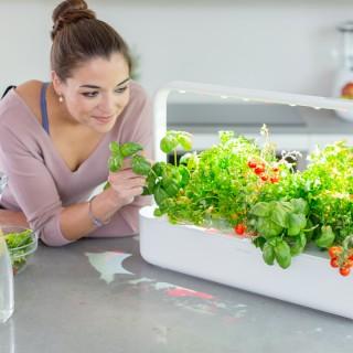 Smart Garden: arriva la nuova serra domestica