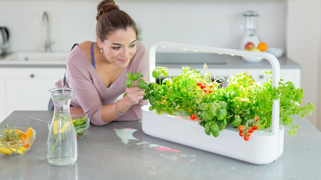 smart garden arriva la nuova serra domestica diredonna. Black Bedroom Furniture Sets. Home Design Ideas