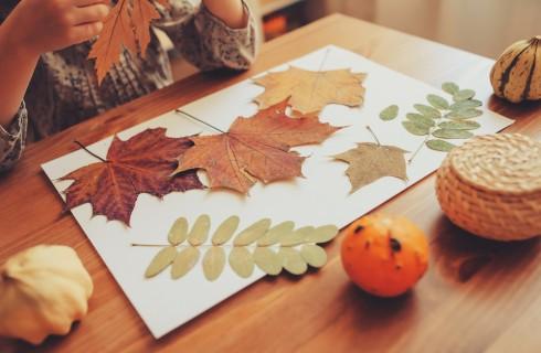 Lavoretti creativi autunno scuola infanzia: 3 idee