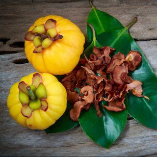 Alimentazione: tutto sulla garcinia cambogia