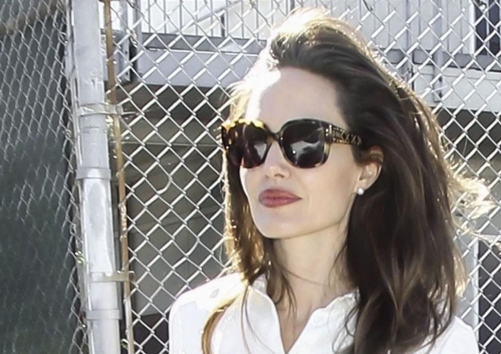 LadyDiorStuds - Angelina Jolie