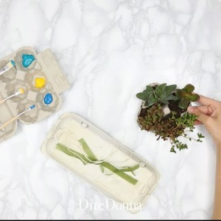 Idee creative per riutilizzare i cartoni delle uova