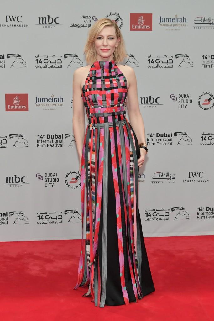 2017 Dubai International Film Festival - Day 1