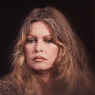 Molestie sessuali, il commento di Brigitte Bardot