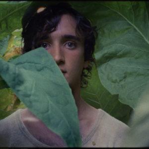 Lazzaro felice, il film di Alice Rohrwacher