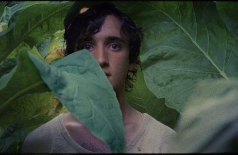 Lazzaro felice: trama e recensione del film di Alice Rohrwacher