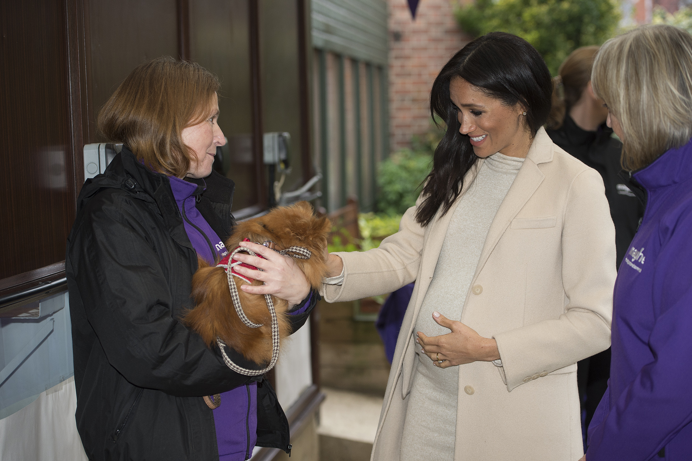 Meghan veste H&M Mama Collection