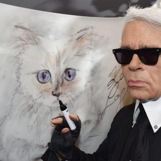 La gatta di Karl Lagerfeld erediterà parte del patrimonio