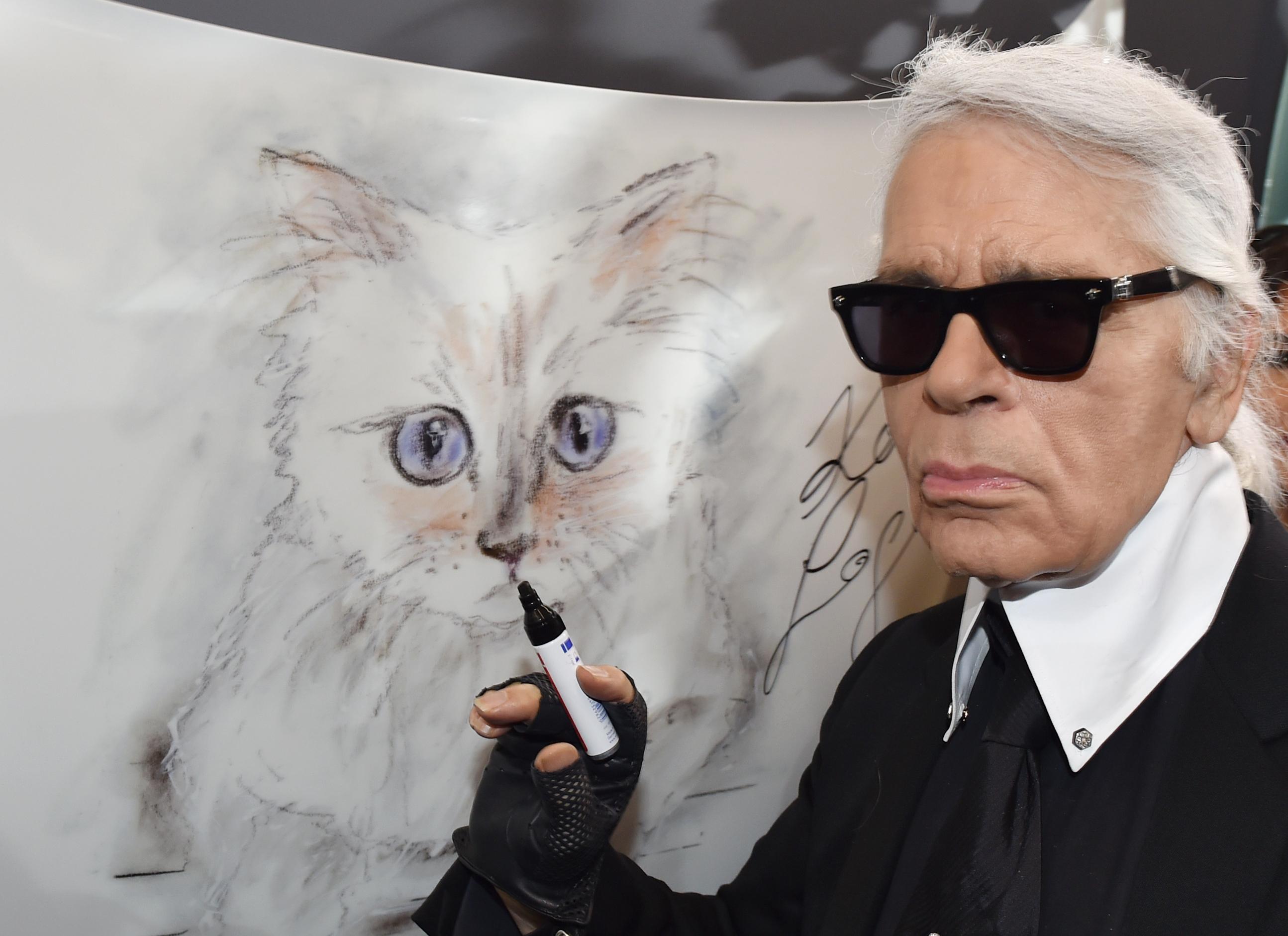 Il gatto Choupette eredita il patrimonio dello stilista
