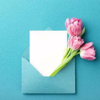 Lettera di ringraziamento alle maestre d'asilo: un esempio