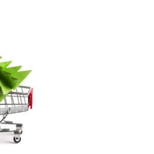 5 alberi di Natale da acquistare online