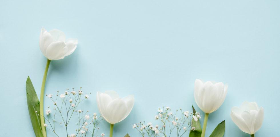 Colore matrimonio: come usare il Classic Blue, colore Pantone 2020